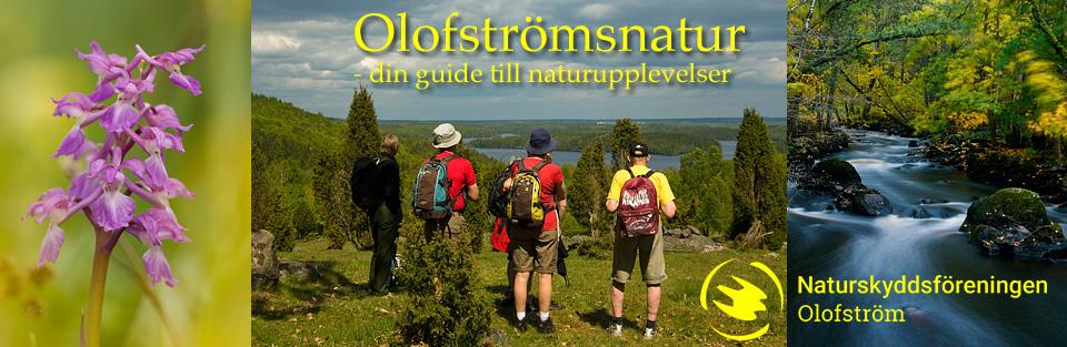 Olofstromsnatur
